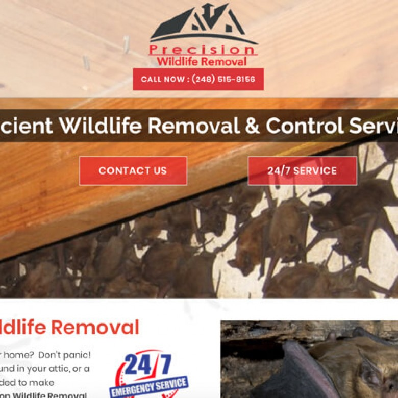 Precision Wildlife Removal Website – Clinton Township, MI