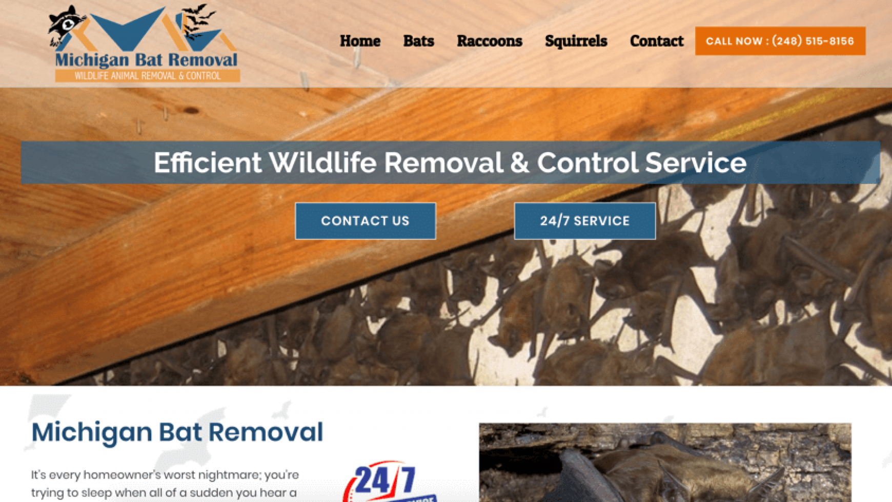 Michigan Bat Removal Website