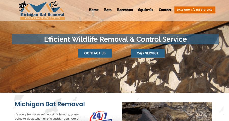 Michigan Bat Removal Website